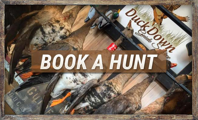 Book a Hunt with Duck Down Guide Service