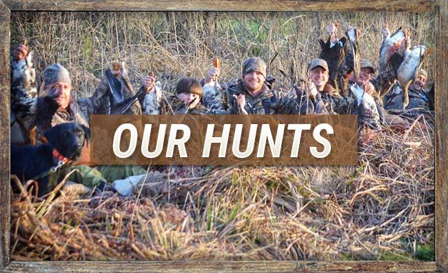 Our Hunts at Duck Down Guide Service