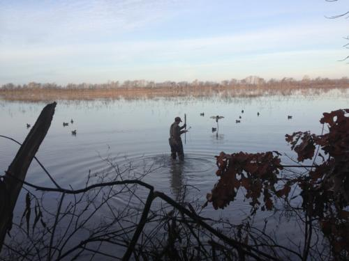 Arkansas Duck Hunting Paradise